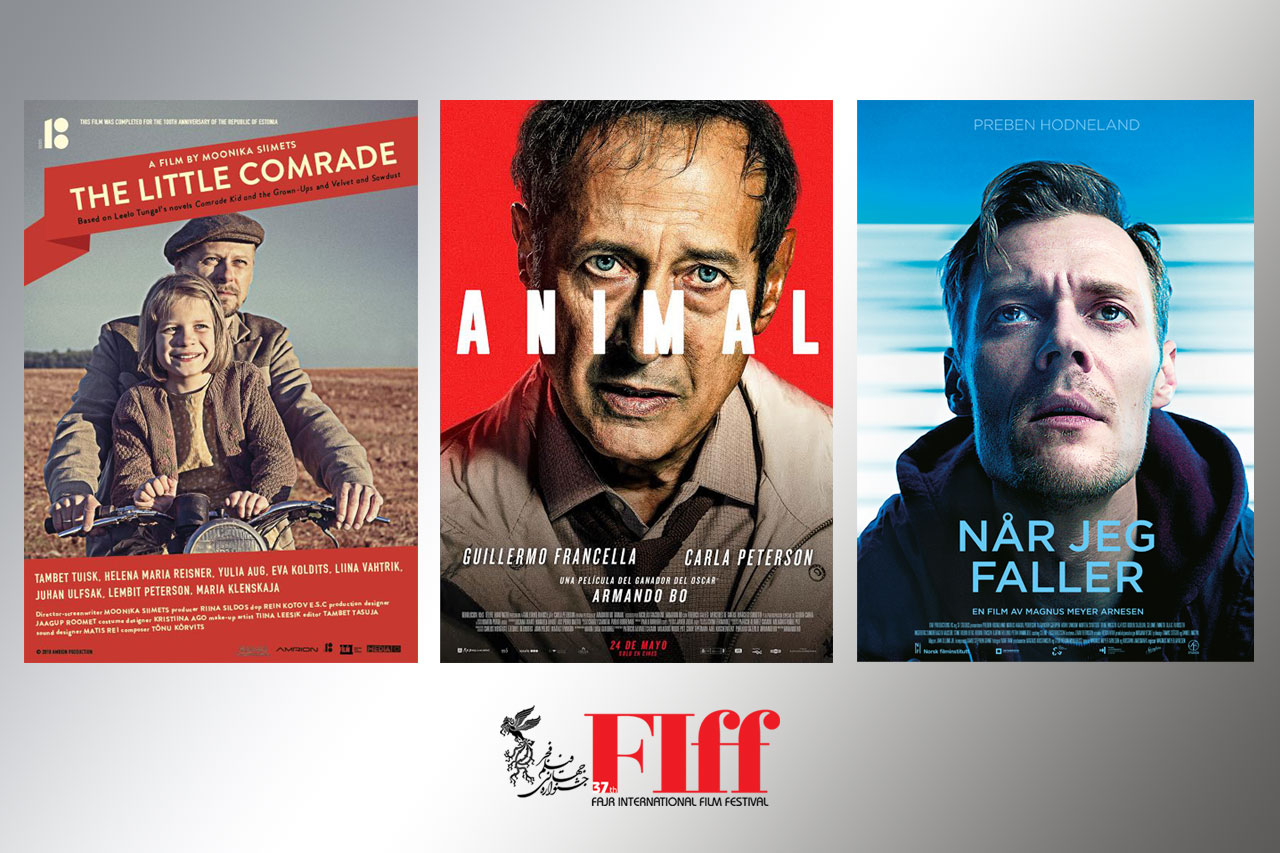 3Film-FestivalOfFestivals
