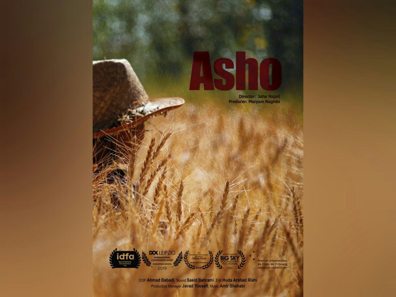 Asho Poster Site